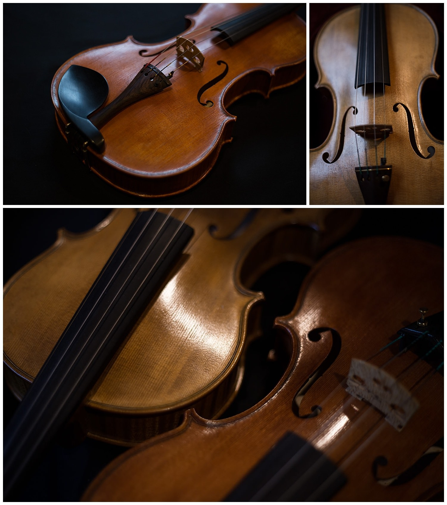 violons artisan luthier